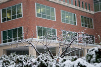20071110campus_snow_KS10419ks