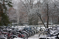 20071110campus_snow_KS10440ks